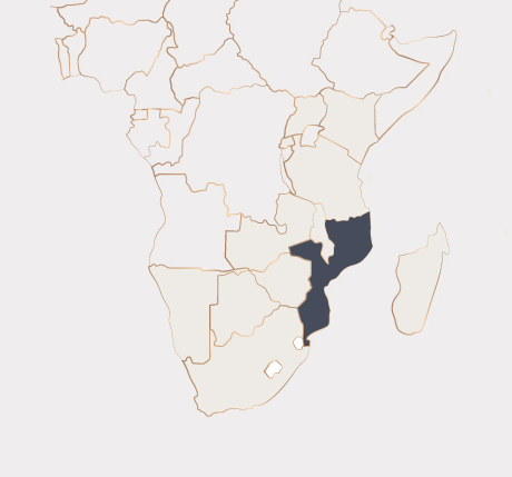 Africa Map - Mozambique