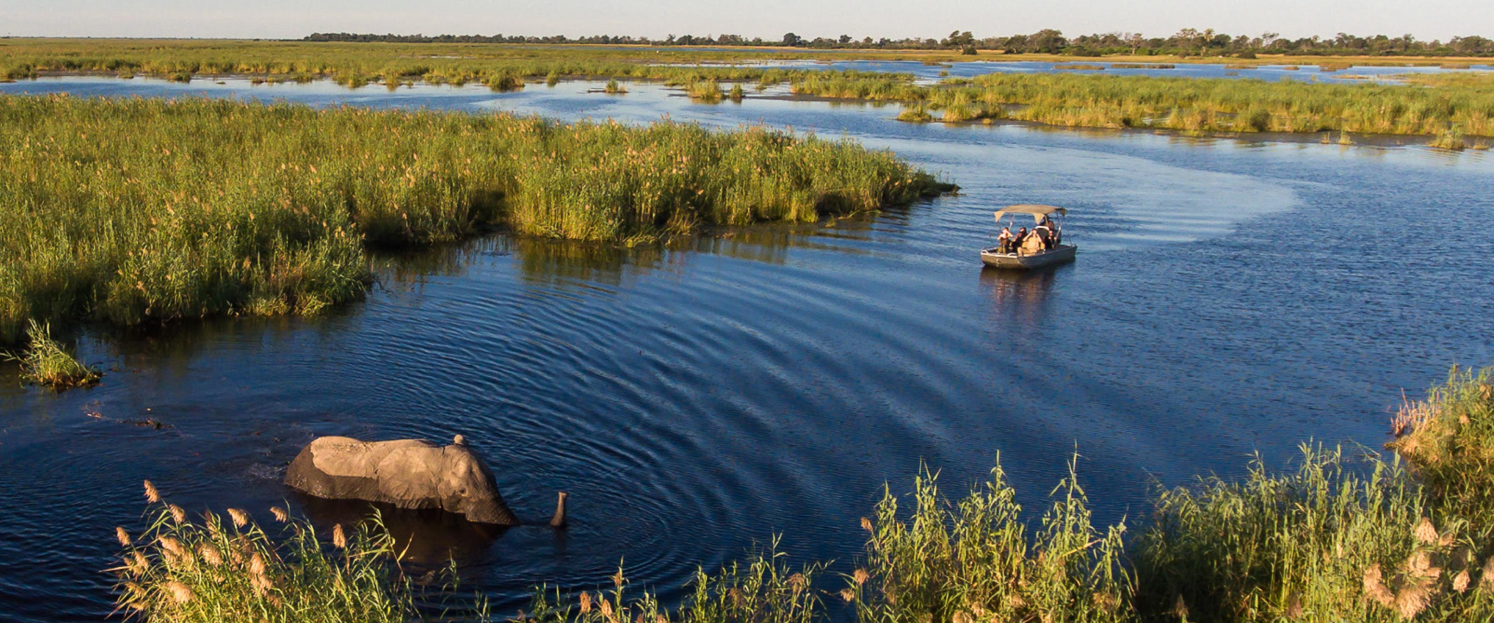 ADORE Africa Safari Guide